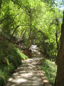 Trail to Weeping Rock