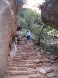 Up the Rock steps to the Upper Emerald Pool
