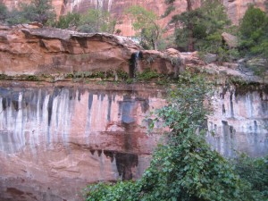 View of Lower Emerald Pool