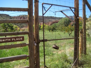 Ingenious gate to orchards uses pulley and stone