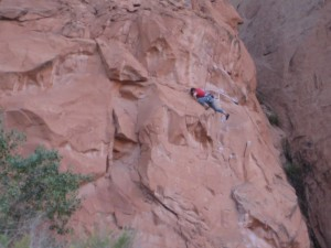 One of many rock climbers