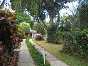 Road into Hotel La Rosa De America