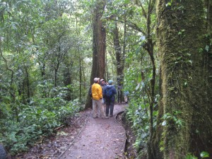 Hiking in the Monteverde Cloud Preserve
