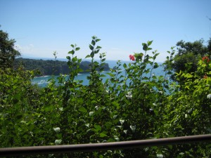 View of ocean from hike in Manuel Antonio Park